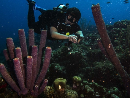 Mergulhador master scuba